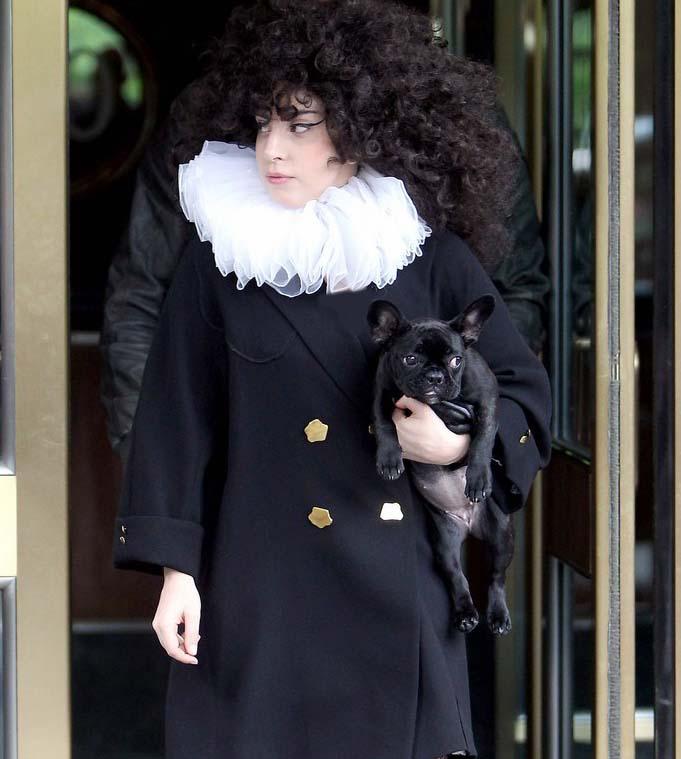 Lady Gaga | لیدی گاگا | عکس های جدید لیدی گاگا | جدیدترین عکس های لیدی گاگا | لیدی گاگا و آدام لمبرت | لیدی گاگا لباس گوشتی | لیدی گاگا بیوگرافی | بیوگرافی لیدی گاگا | لیدی گاگا دانلود | دانلود آهنگ های لیدی گاگا | لیدی گاگا کلیپ | کلیپ جدید لیدی گاگا | لیدی گاگا 2014 | لیدی گاگا شیطان پرست | مبتذل ترین زن قرن | لیدی گاگا فراماسونری | فتوشاتهای جدید لیدی گاگا | شاتهای جدید لیدی گاگا | آریا فان